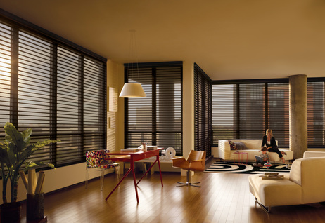 Window Blinds Shades And Shutters 2010 Sunscreen Loft 1