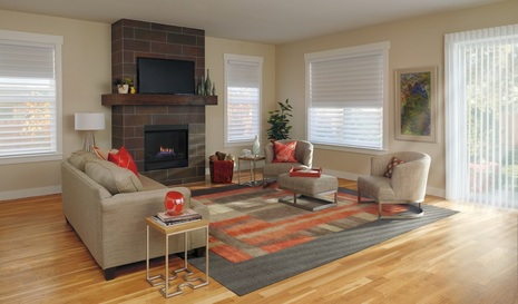 Window Blinds Shades And Shutters 2016 Duolite Living Room Crop